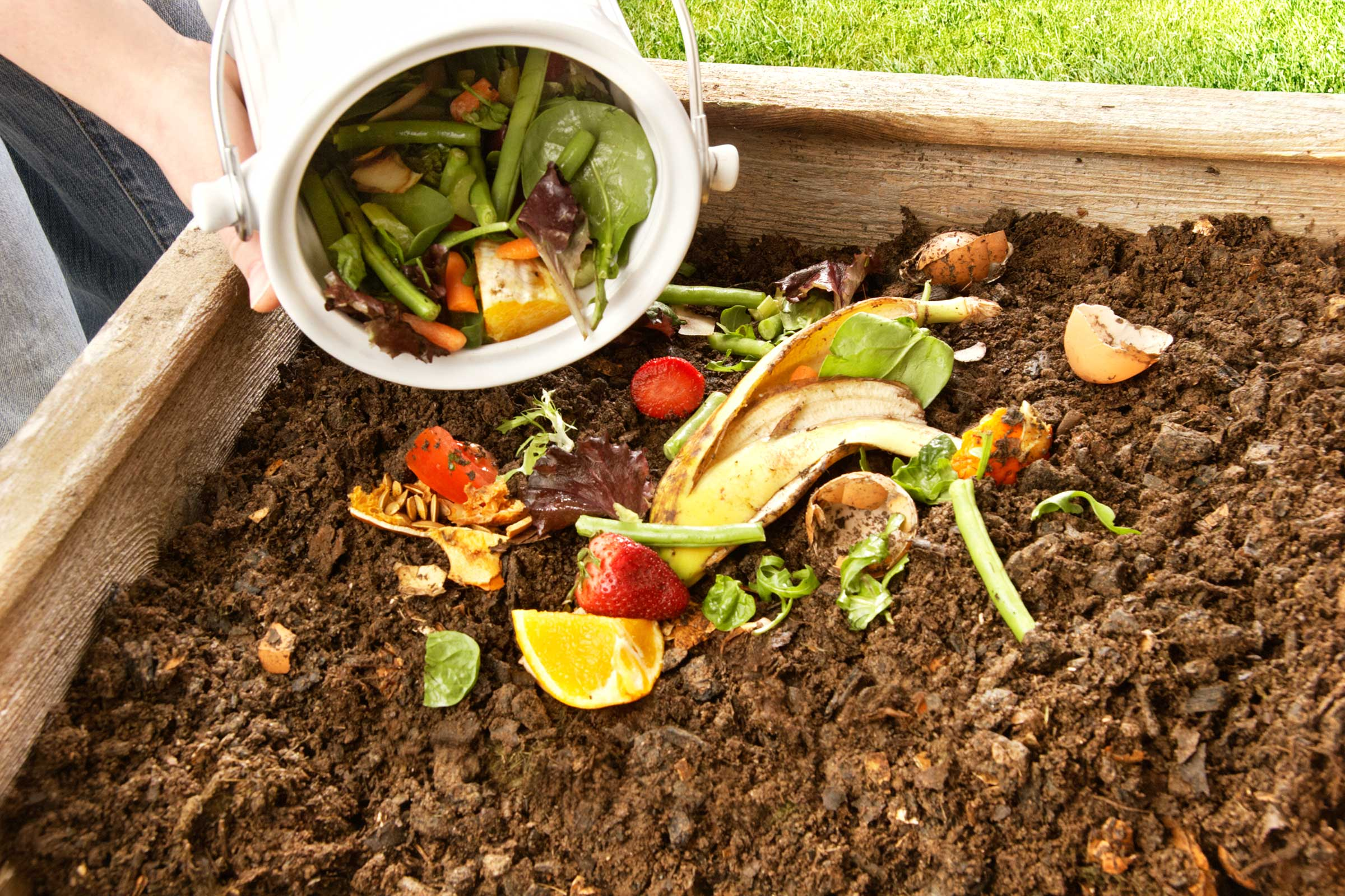 6 STEPS TO COMPOSTING YOUR HOUSEHOLD WASTE