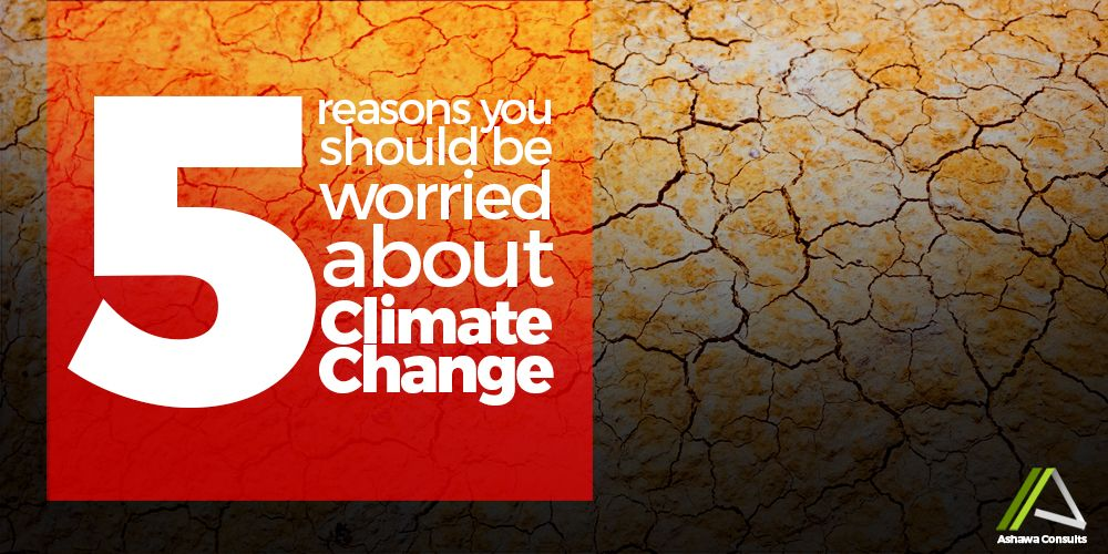 5 REASON YOU SHOULD  BE WORRIED ABOUT CLIMATE CHANGE