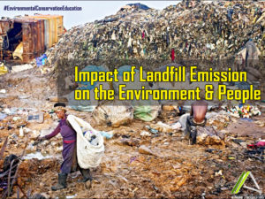 MANAGEMENT OF LANDFILL EMISSION AND THEIR IMPACT ON THE ENVIRONMENT